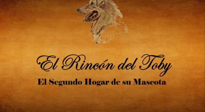 Cuidador de Mascotas, 'El rincón del Toby', canguro en Santa Cruz de Tenerife