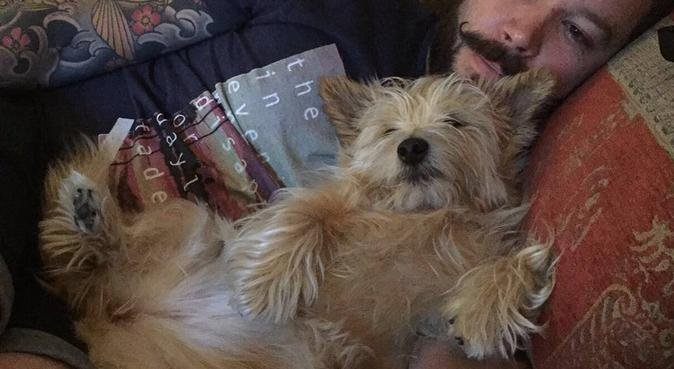 Yappy Dayz Bed'n'Biscuit, dog sitter à London
