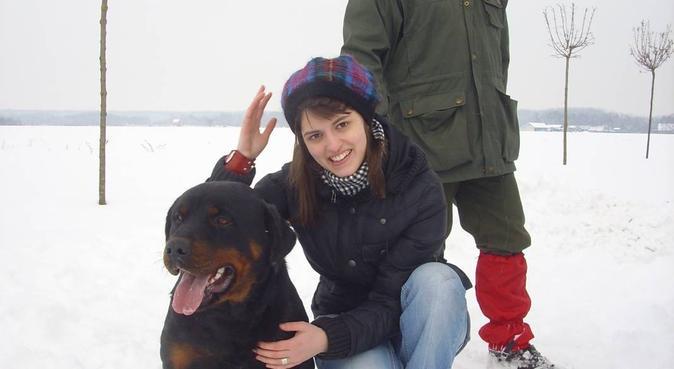 Dog walker when you need it, hundvakt nära Stockholm