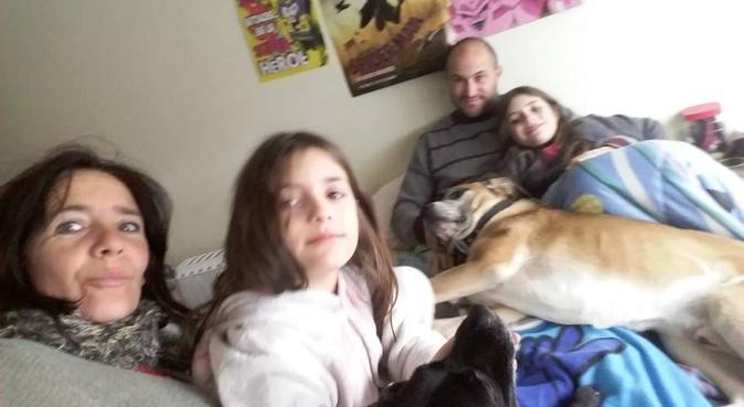 I migliori cani al guinzaglio, dog sitter a Genova