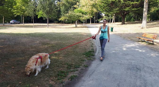 Promenade de chiens à LR, parc et bord de mer, dog sitter à La Rochelle