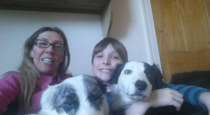 Affordable dog care in Harrogate, dog sitter in Harrogate
