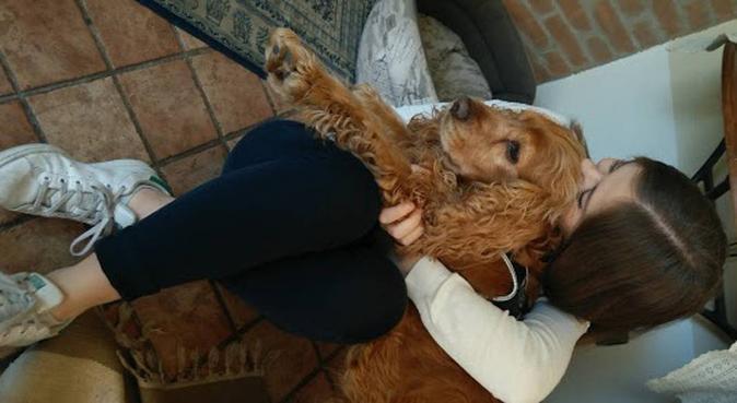 L'amica perfetta per i vostri cani!, dog sitter a Gussago