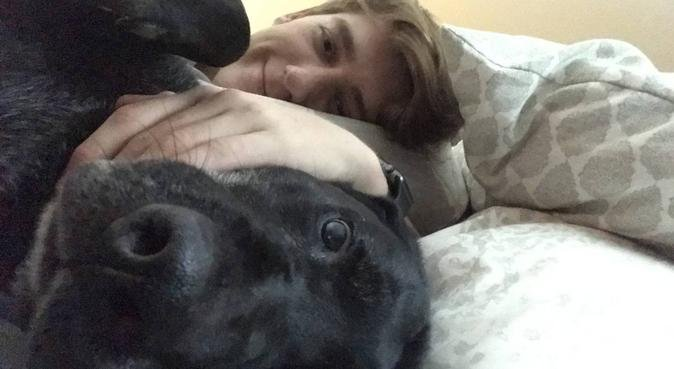 Pet Lover Felix, dog sitter in Exeter