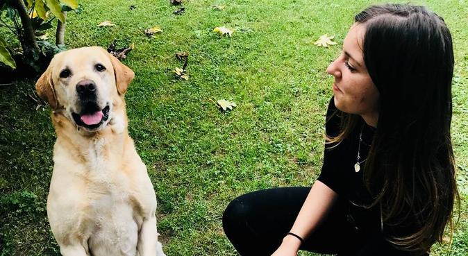 Passeggiate e coccole senza sosta 🐾🐕, dog sitter a San Giovanni Lupatoto