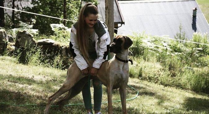 Ut på tur med en trygg person!, hundepassere i Frei, Norge