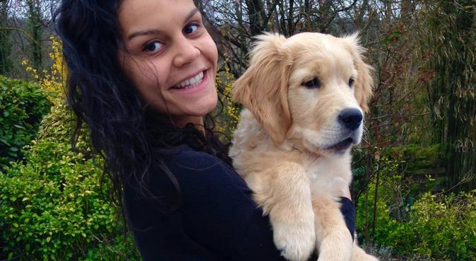 Nos amis les chiens 🐶😊, dog sitter à Chambéry