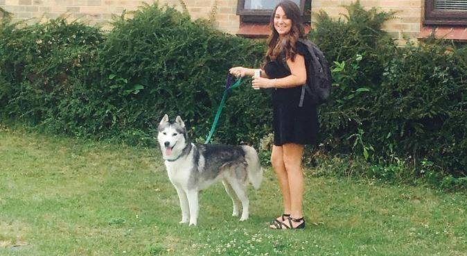 Loving, Dedicated Dogsitter In Royston, dog sitter in Royston
