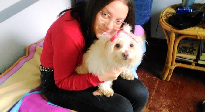 Cura e tempo libero per i nostri amici a 4 zampe!, dog sitter a Bologna, BO, Italia