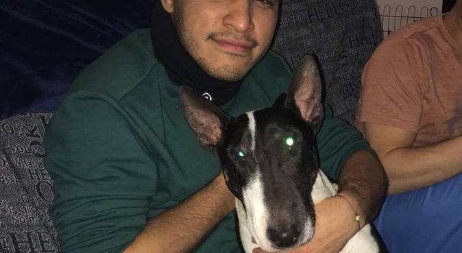 Canguro y Cuidador Canino 100% confiable y seguro., canguro en Barcelona, España