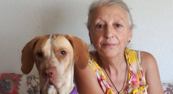 Familia amante de los animales con chalet y jardín, canguro en Santa Cruz del Retamar