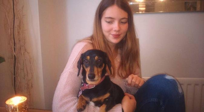 Dog walks in Southampton City Centre, dog sitter in Southampton