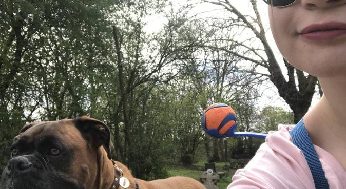 French dog walker in North London, dog sitter in London