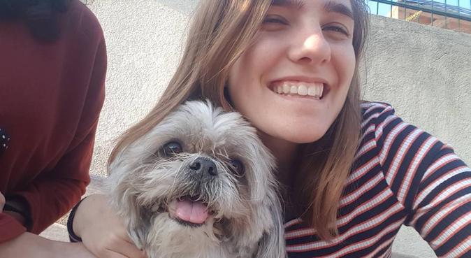 Une promenade pour vos toutou chéris, dog sitter à Saint Laurent du var