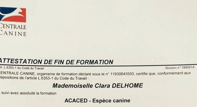 DIPLOME CERTIFIÉ: JE PARLE CHIEN!, dog sitter à Paris, France