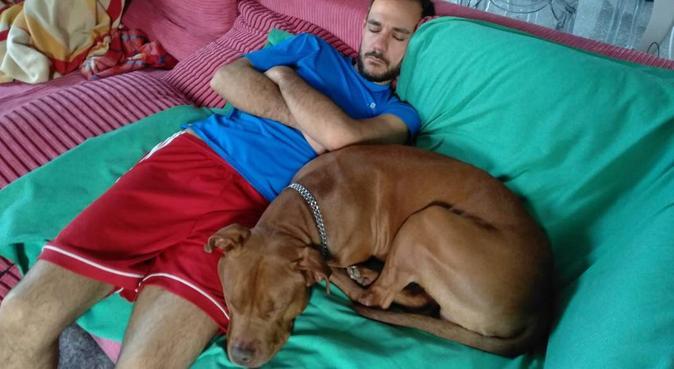 Sicura ed amorevole custodia del tuo cane., dog sitter a Nonantola