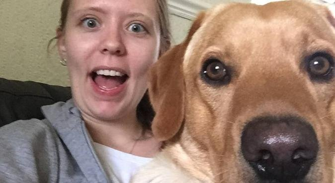 Looking after your best friend in Sidcup, dog sitter in Sidcup