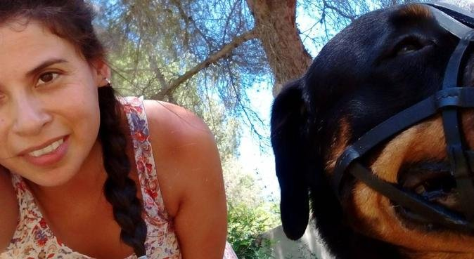 Veterinaria paseadora de perros (título en trámite, canguro en Palma De Mallorca