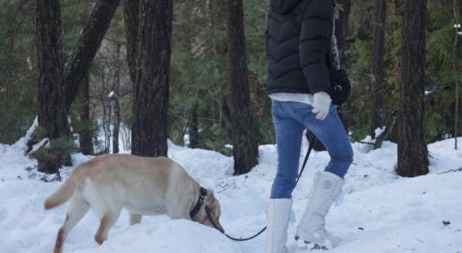 Kärleksfull hundpassning i Nacka, hundvakt nära Saltsjö-boo
