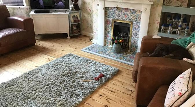 Suzie's doggy care, dog sitter in Sutton Coldfield