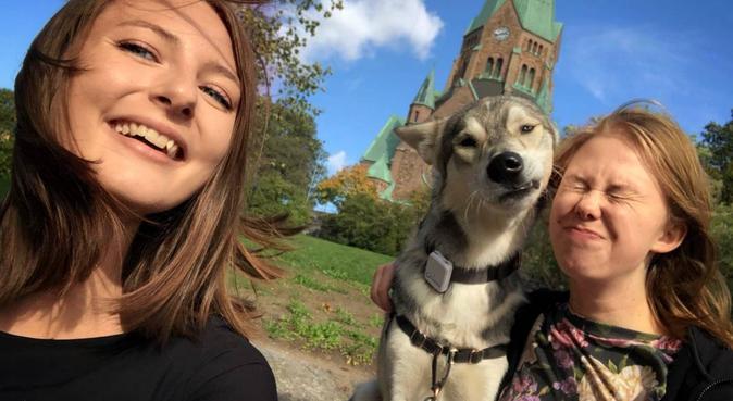 Hundvana systrar erbjuder passning mitt i Uppsala, hundvakt nära Uppsala, Sverige