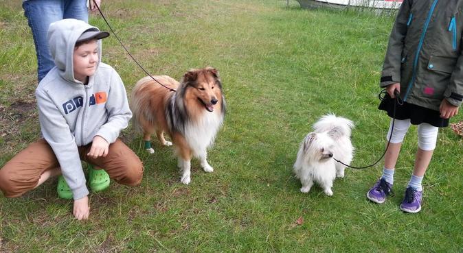 Välkommen till hundälskande familj centralt Kalmar, hundvakt nära Kalmar