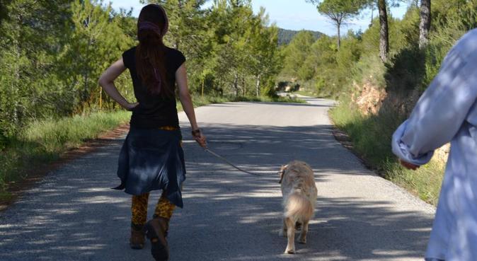 Home is everywhere, y donde haya un perro hay vida, dog sitter a Bergamo