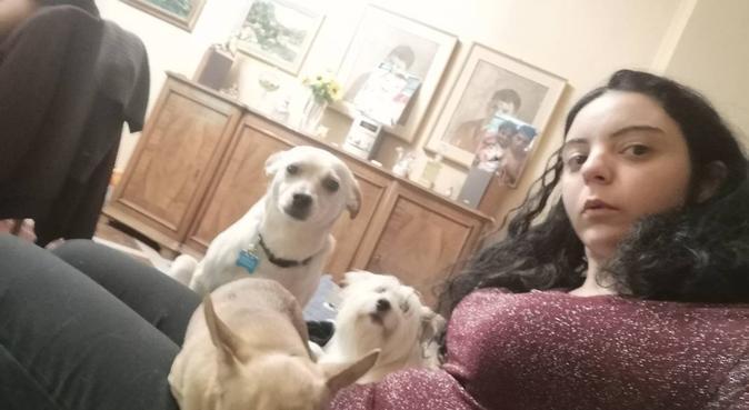 Felicità per i nostri amici, dog sitter a Mezzani, PR, Italia