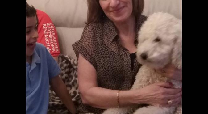 Dog walker and massive dog lover, dog sitter in London