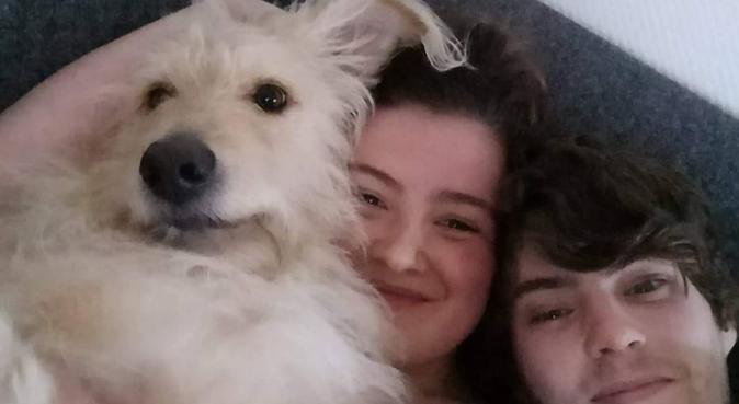 Kärleksfull hundpassning på dina villkor!, hundvakt nära Lund