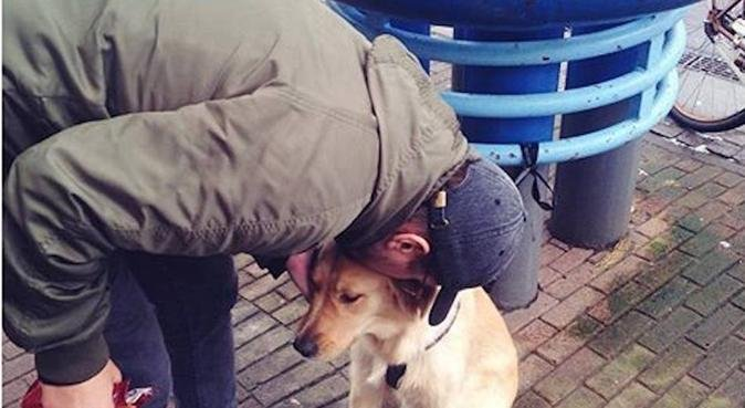 Hundpassning i centrala Malmö, hundvakt nära Malmö