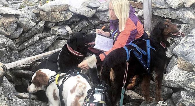 Erfarne hundeelskere med gode referanser, hundepassere i Trondheim