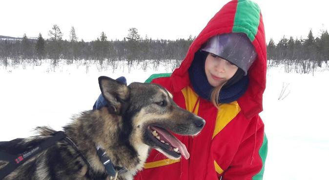 Din hund kommer att bli en VIP hos oss!, hundvakt nära Linköping