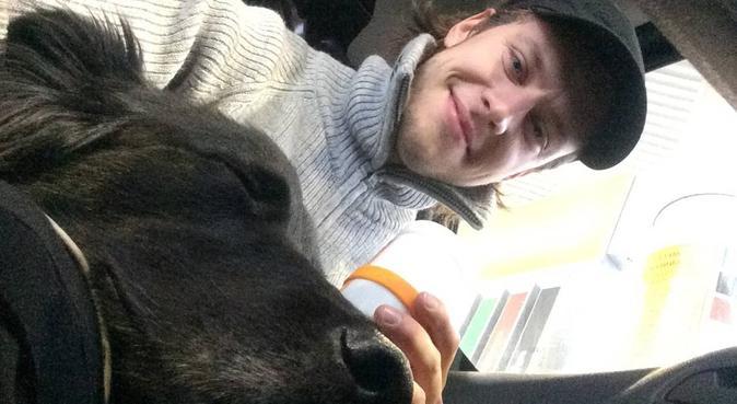 Hundepasser på Holmenkollen søker turkamerat, hundepassere i Oslo