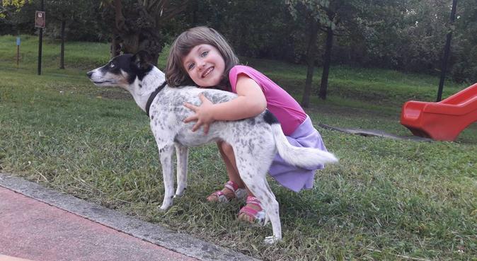 serietà ed un amore incondizionato per i cani, dog sitter a san zeno sul naviglio