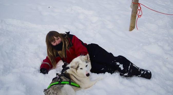 Fun-loving dog carer, hundvakt nära Kalmar