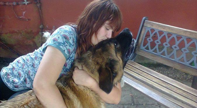 La valle dei cani, dog sitter a Roma