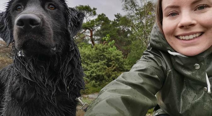 Hundpassning vid vackra Hisingsparken, hundvakt nära Göteborg