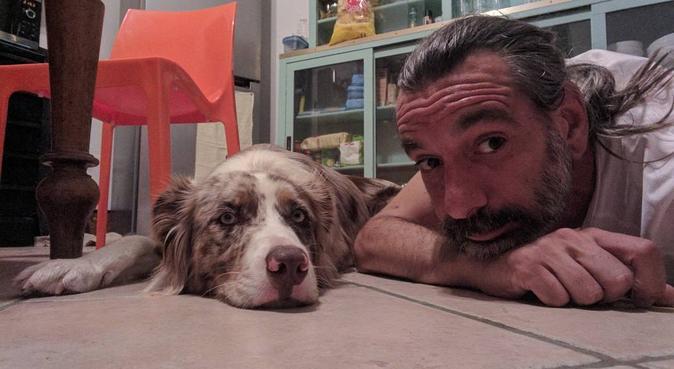 Il benessere del tuo cane, prima di tutto!, dog sitter a Verona