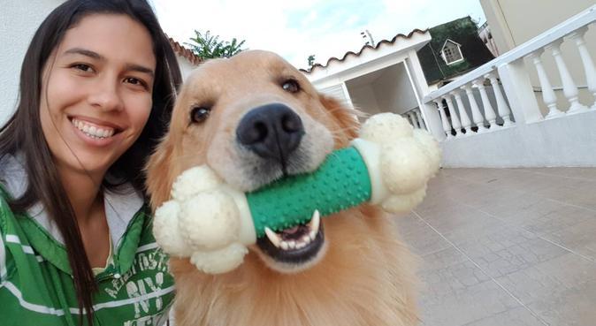 El mejor paseo y cuidado para tu mascota!, canguro en Vilanova i la Geltrú, España