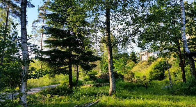 Hundpassning i Västsveriges finaste naturområde, hundvakt nära mölnlycke