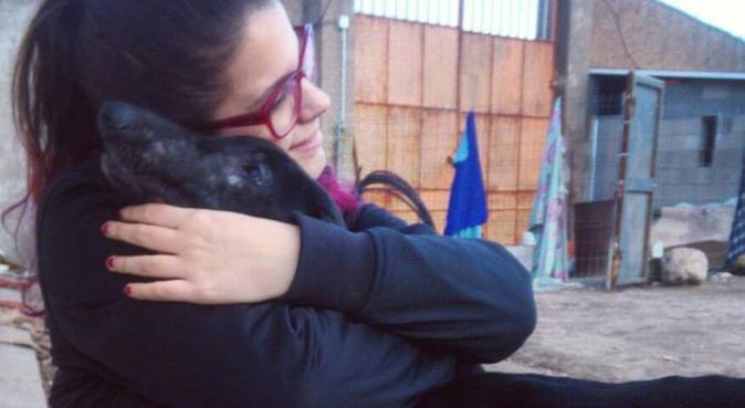 ¡Un segundo hogar para tu perrete!, canguro en Salamanca