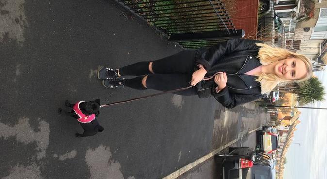 Flexible dog walker, dog sitter in Southampton