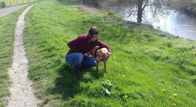 Walkie Wonders, dog sitter in Staines, UK