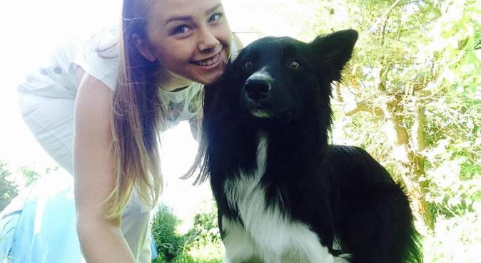 Kjærlighet og trim - perfekt match!, hundepassere i FREI
