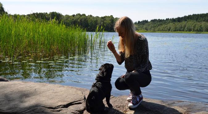 Kärleksfull hundpassning i Kålltorp, hundvakt nära Göteborg
