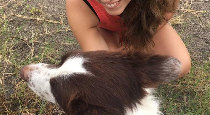Aus Liebe zum Hund, Hundesitter in Berlin
