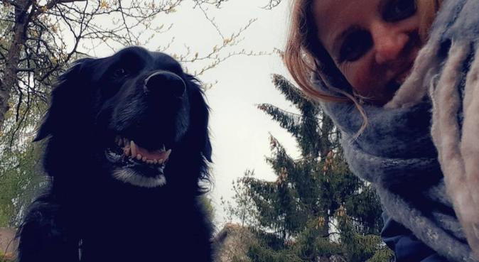 100% dog' satisfaction guaranteed, hundvakt nära Nacka