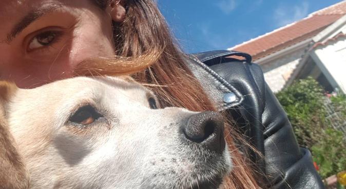 L'étudiante, dog sitter à Aytré