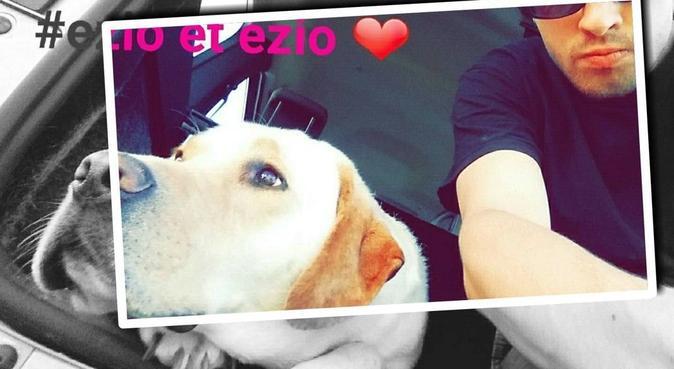 Une promenade, des jeux, un bon moment!, dog sitter à Aix-en-provence